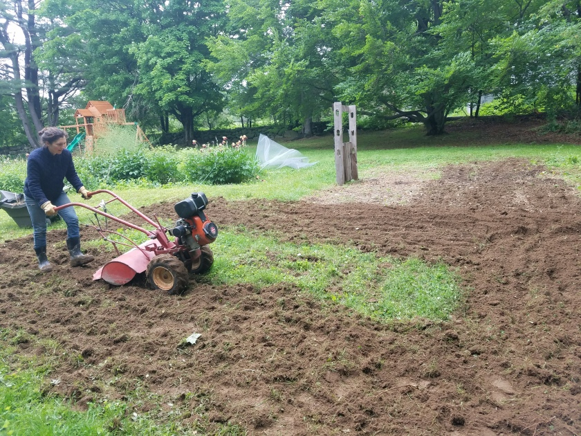 Melissa and the 47 year old rototiller.jpg